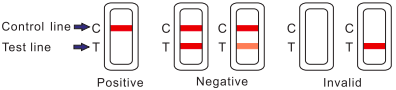 Healgen Drug Test Results Intrepretation