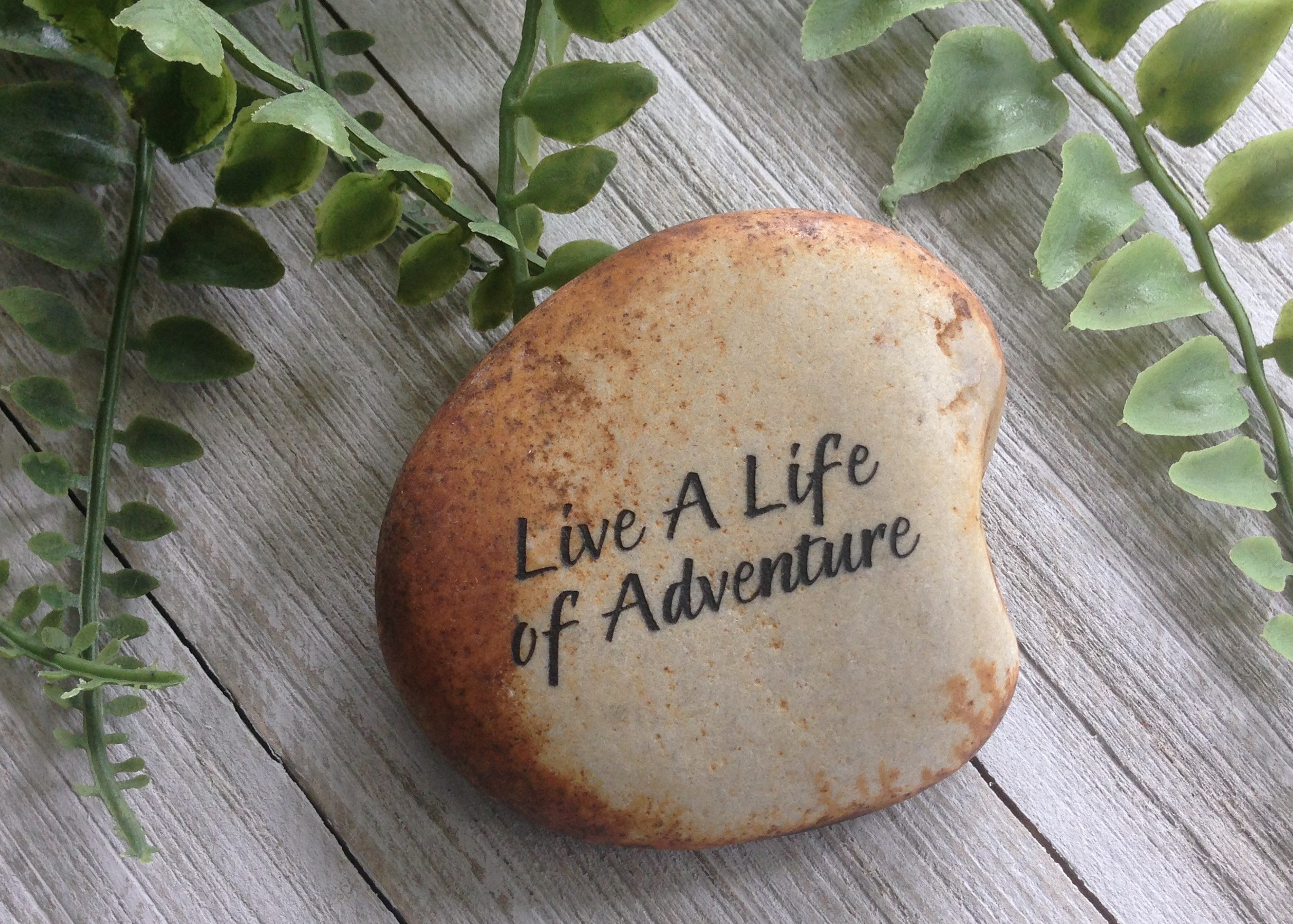 Live a Life of Adventure!