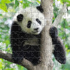 Baby Panda 125 Piece Small Wooden Jigsaw Puzzle   Zen Puzzles