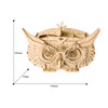 Owl Pencil Box - Rolife Wooden DIY Kit | Robotime