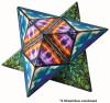 Geometric Shape Shifting Magnetic Cube - Elements | Shashibo