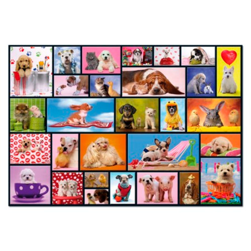 Shared Moments 1000 Piece Jigsaw Puzzle, Educa