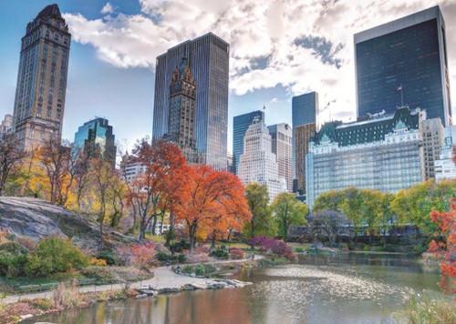 New York Central Park 1000 Pieces   Jumbo