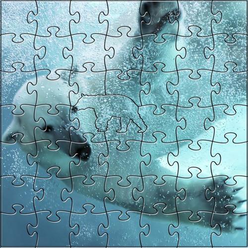 Polar Bear 50 Piece Teaser Size Wooden Jigsaw Puzzle | Zen Puzzles