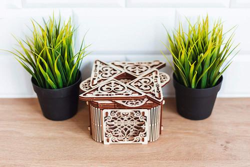 Mystery Box Mechanical Wooden Model Kit | Wooden City