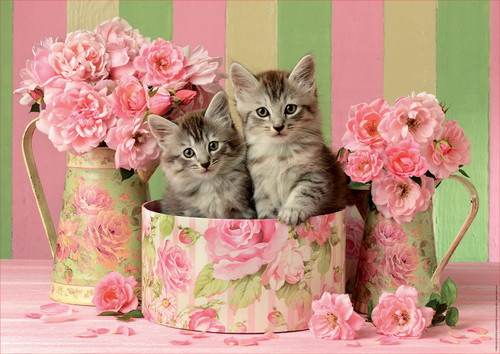 Kittens with Roses 500 Piece Jigsaw Puzzle | Educa