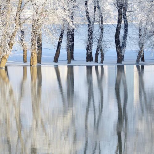 Winter Lake 50 Piece Teaser Wooden Jigsaw Puzzle | Zen Puzzles
