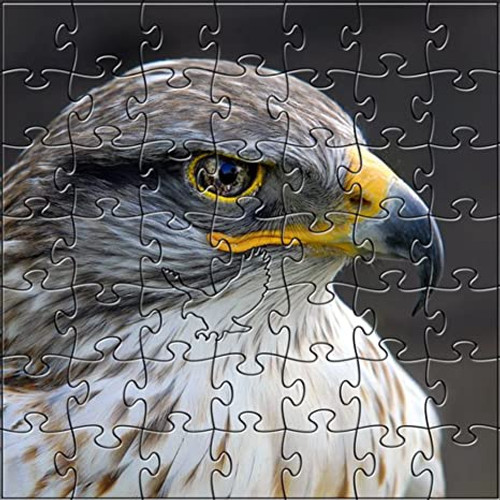 Eagle Eye 50 Piece Teaser Wooden Jigsaw Puzzle | Zen Puzzles