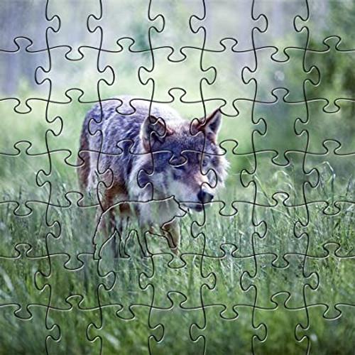Alpha Wolf 50 Piece Teaser Wooden Jigsaw Puzzle   Zen Puzzles