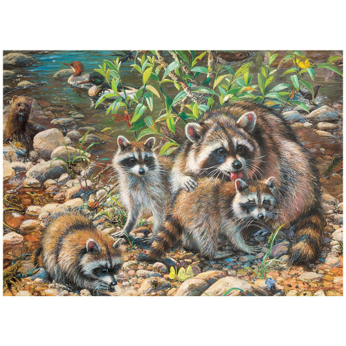 Raccoon Family 350 *Family Pieces* Jigsaw Puzzle | Cobble Hill