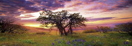"""Oak Tree"" 2000 Piece *Panorama* Jigsaw Puzzle | Heye"