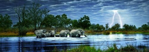 """Herd of Elephants"" 2000 Piece *Panorama* Jigsaw Puzzle | Heye"