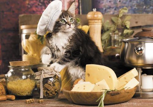 """Cat Cook"" Farida 1000 Piece Jigsaw Puzzle   Trefl"
