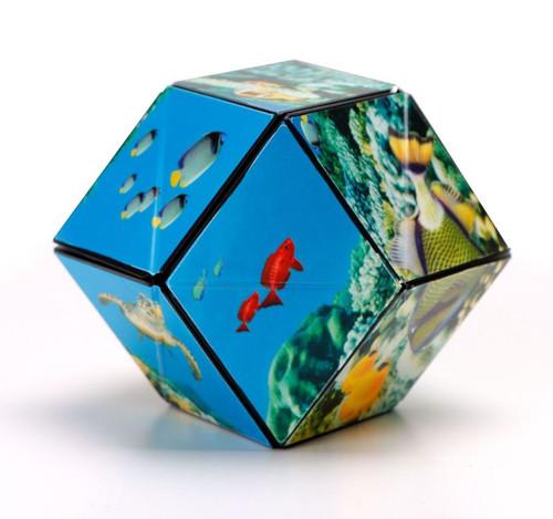 "Geometric Shape Shifting Magnetic Transformation Cube ""UnderSea"" | Shashibo"