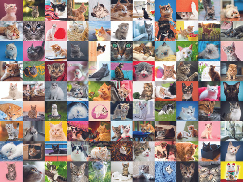 """99 Cats"" 1500 Piece Jigsaw Puzzle | Ravensburger"