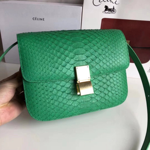 CELINE Green  Python Medium Classic Box Flap Bag