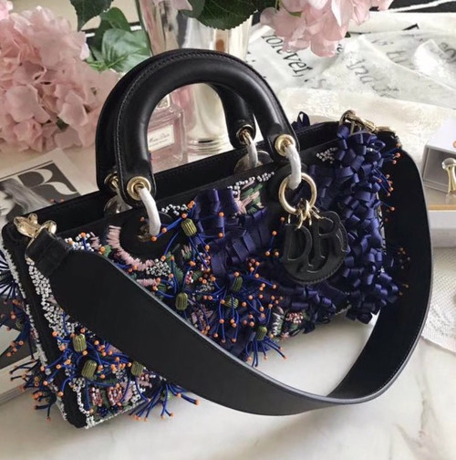 Christia Dior Dior Embroidered Runway Bag 2016 Limited Edition (I)