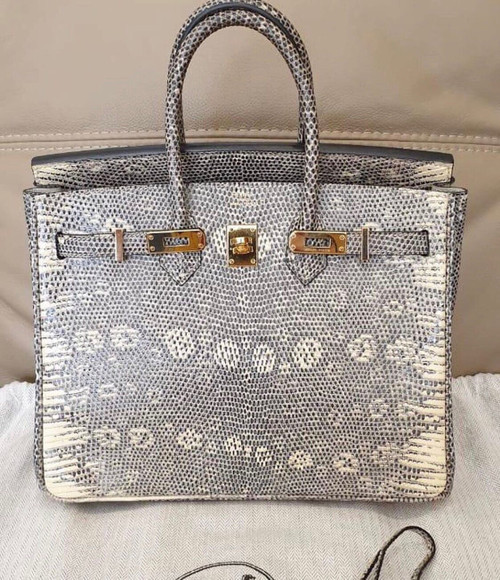 Hermes SHINY OMBRÉ SALVATOR LIZARD BIRKIN 25 WITH GOLD HARDWARE