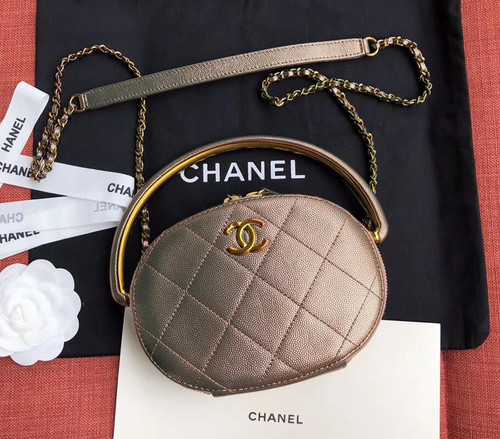 Chanel Metallic  Camera Case  AS0764