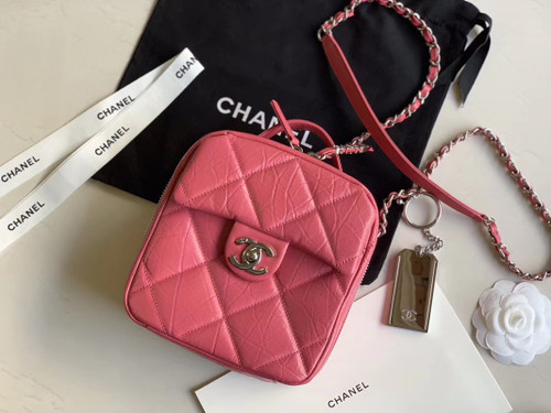 Chanel Camera case AS1323 Pink