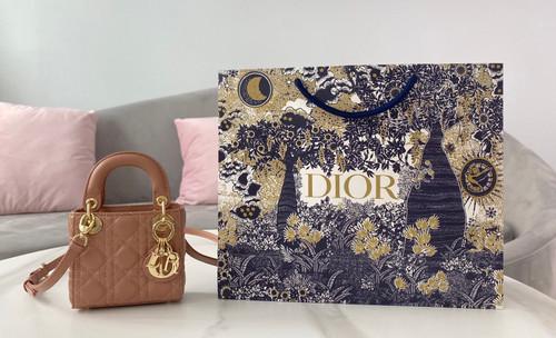 Christian Dior MICRO LADY DIOR BAG