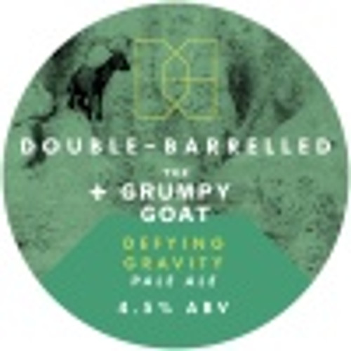 Double Barrelled - Defying Gravity