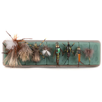 Tacky Fly Dock Image 1
