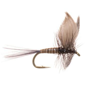 Umpqua Blue Quill Image 1