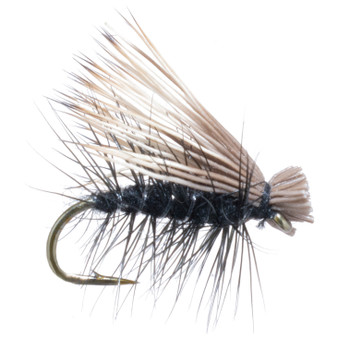 Umpqua Elk Hair Caddis Black Image 1