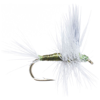 Solitude Fly Bwo Thorax Image 1