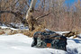 Fishpond Thunderhead Large Submersible Duffel Riverbed Camo Image 3