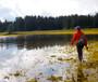 Fishpond Summit Sling Tortuga Image 6