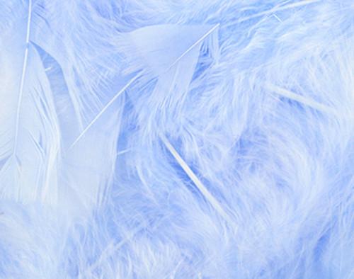 Blue Loose Turkey Feathers