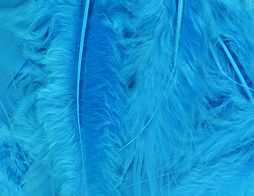 Turquoise Loose Turkey Feathers