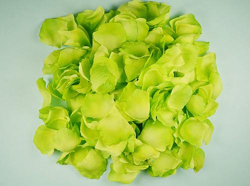 Apple Green Wedding Silk Rose Flower Petals - 12 Packs