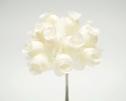 Ivory/Ivory Polyester Rose - Pack of 144