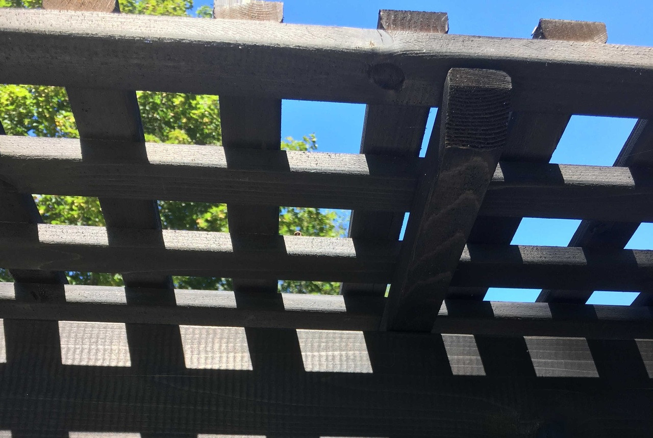 """Close up shot of our lattice roof panels made from 1"""" x 2"""" runners / Stained Cinder color / Huntington Station, NY"""
