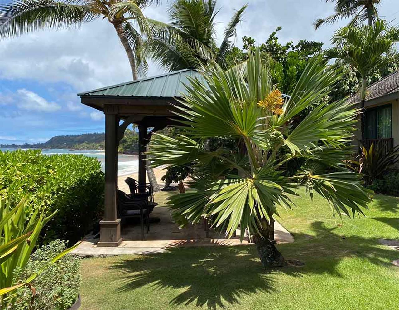 Hawaiian Pavilion Paradise