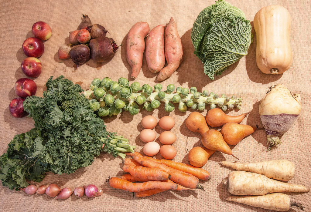 Winter CSA  - 10 Week's of Seasonal Fall - Early Winter Produce