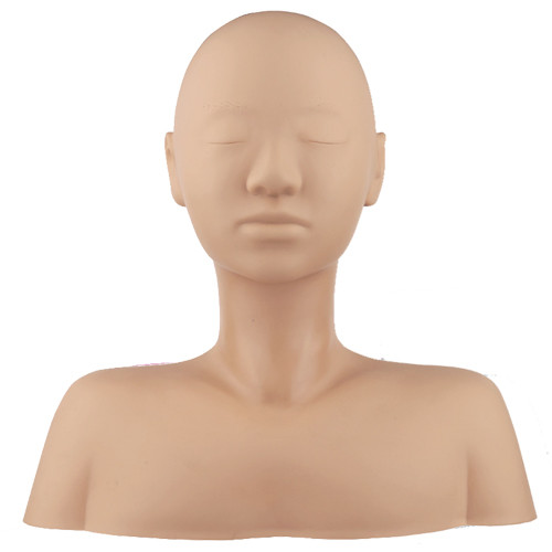 Professional Massage Mannequin with Shoulders