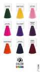 ICON - Playful Brights - Direct Color 90ml