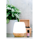 ECO MODERN ESSENTIALS - Diffusers - Bliss Mist Diffuser