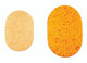 ARTIST'S CHOICE - Compressed Cleansing Sponges - 2 Pack