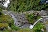 Egmont National Park, Taranaki, bush, curtis falls, gorge, manganui river, waterfall