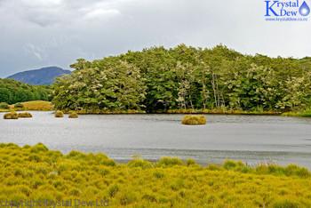 Mavora Lakes Reserve