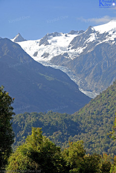 Frans Josef Glacier & Southern Alps From Canavans Knob