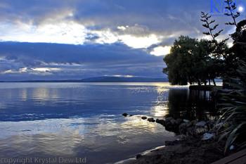 Lake Rotorua At  Dawn