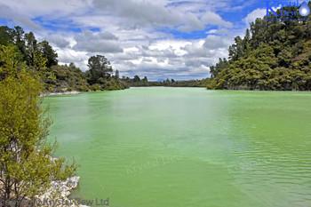 Lake Ngakoro, Waiotapu Thermal Wonderland
