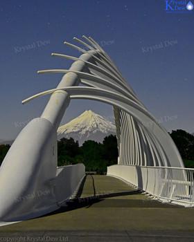 Taranaki & Te Rewa Rewa Bridge