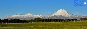 Ngauruhoe & Tongariro